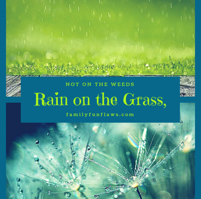 Rain on the Grass, Not on the Weeds